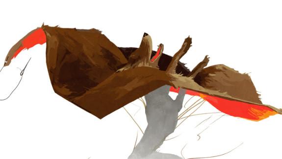 Ausschnitt Fuchspelz Julia Beutling