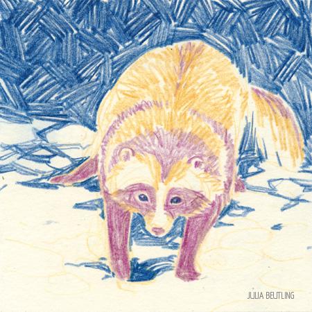 animal saved today 0154 - nicholas