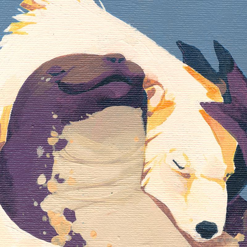 WEB-Morph---Bear-and-Seal-Detail3-julia-beutling