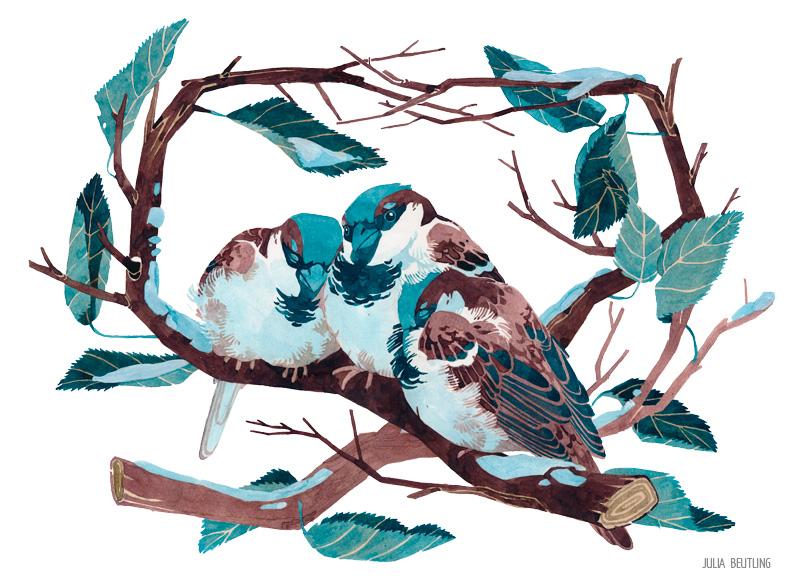 WEB-Spatzen-Tinte-Winterkarte-2016-julia-beutling