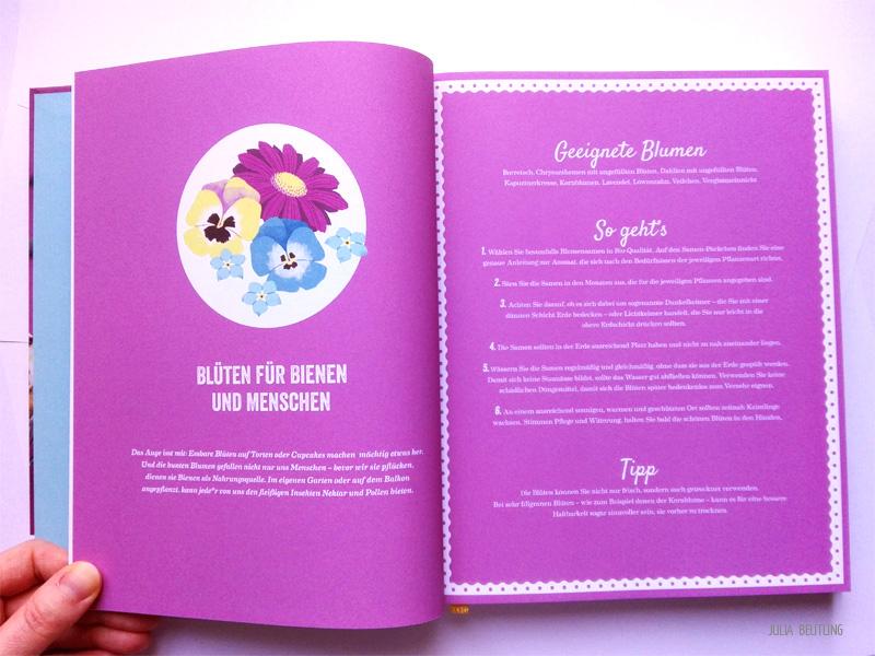WEB-VeBa-Rosa-Seite-5-julia-beutling